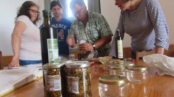 Imagem da galeria de fotos UFCD_Cultura de Plantas Aromáticas, Medicinais e…